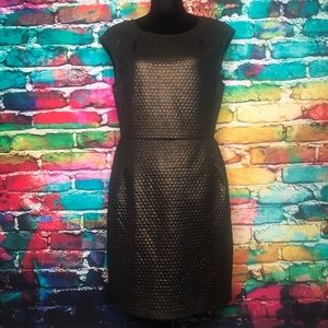 HOLIDAY DRESS ALERT! Collective Concepts Shimmer